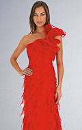 2011 Prom Dresses