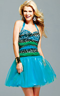 2011 Prom Dress